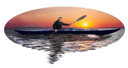 swordwhale eliptical 500x
