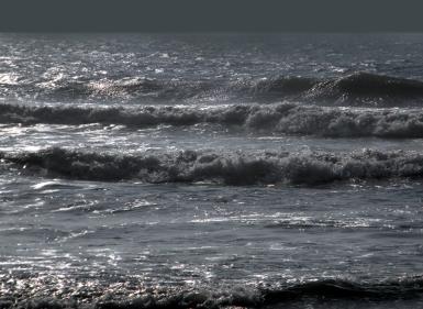 Assateague surf