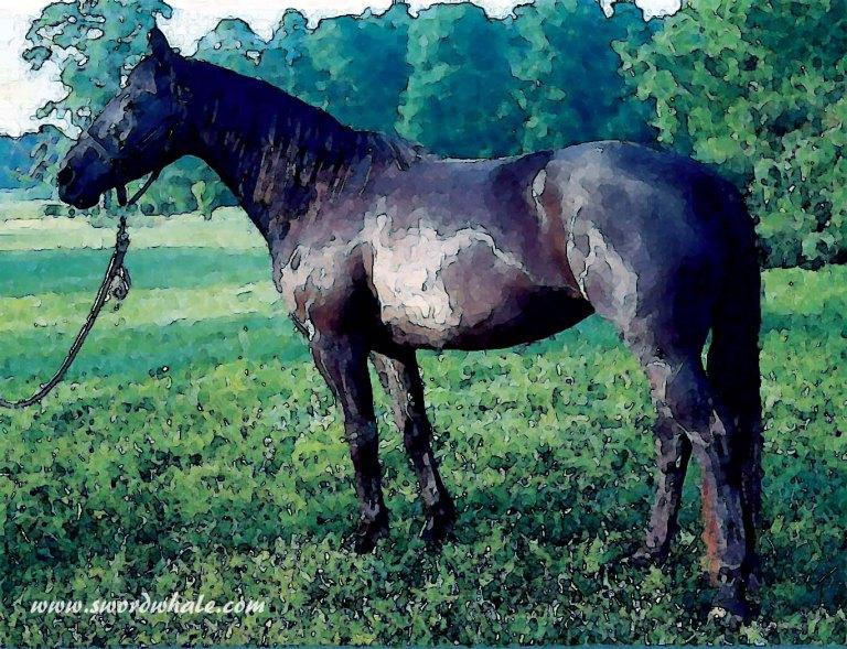 black-mare-2