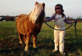 Knock'em Silly the ten dollar pony