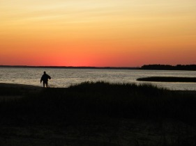 Tom's Cove Assateague