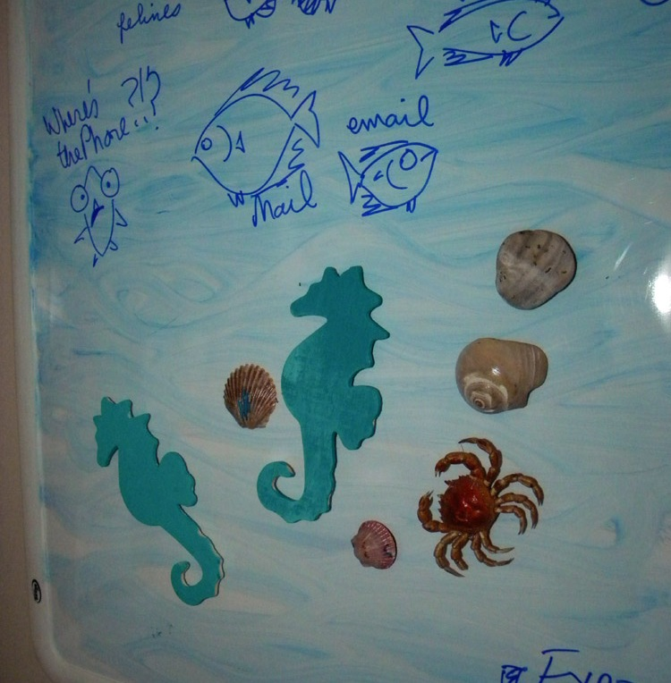 an assortment of magnets, many rocks and shells from Chesapeake Bay beaches and Assateague Is.